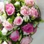 Różowa kaskada w zieleni