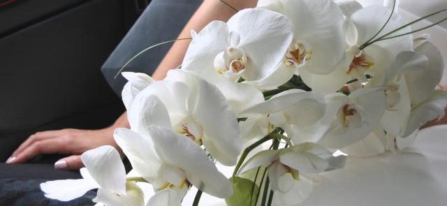 Ślubna gałązka z białymi storczykami