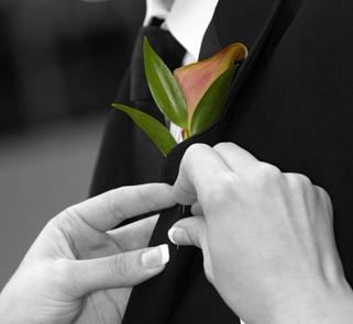 Pojedynczy kwiat o oryginalnej barwie