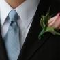 Kontrast z krawatem