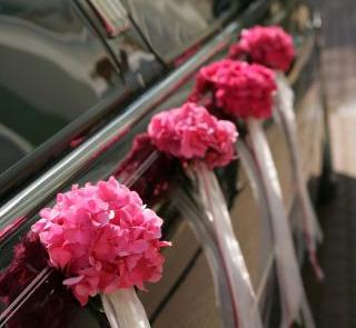 Różowa hortensja i białe wstążki jako ozdoby auta