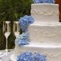 Biały tort ozdobiony niebieską hortensją